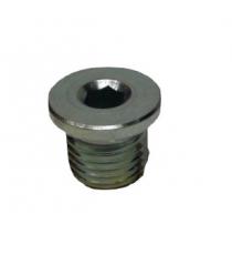 Bouchon de vidange moteur lombardini Focs / Progress Diametre 14 mm